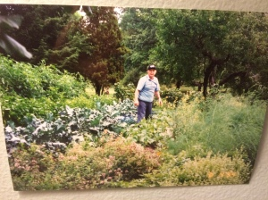 Dad in his garden taped to my wall.