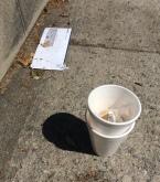 styrofoam cups.JPG